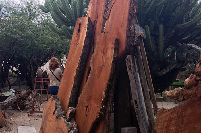 Interior Design Cabo - Inspiration - Wood Materials